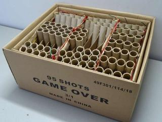 Game Over 95 shots flowerbed